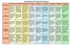 Lifespan Development Chart