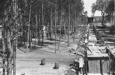 The fenced perimeter and an entrance to the women's camp at Wöbbelin. Germany, May 4-6, 1945.