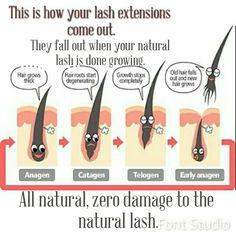 #livid #lividlash #eyelashes #eyelashextensions #lashes #lashextensions #longlivethelash #detroit #detroitvseverybody #weddings #prom #waxing #salon #silklashes #mink #beauty #glam #posh   #makeup #summer #2014 #regram #fall #oakpark #royaloak #ferndale #discount #special #thisweekonly