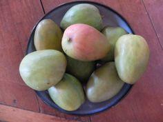 Oh hello, mango season. Wooden Cottage, West Indies, Mango, River, Kunst, Manga, Log Home, Rivers