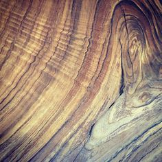 beauty of Parota wood