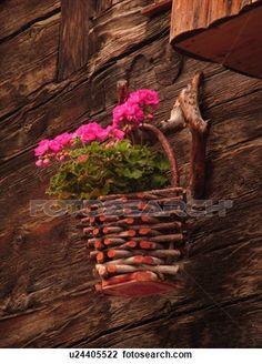 suisse, europe, valais, wallis, val, d'Anniviers, Grimentz, rose, géraniums, dans, a, bois, planteur, vieux, bois, chalet Voir Image Grand Format
