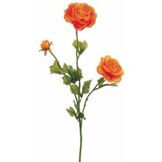 "Silk Ranunculus Spray in Orange3"" Blooms x 27"" Tall ($3.40) ❤ liked on Polyvore featuring home, home decor, floral decor, orange home decor, flower home decor, flower stem and orange home accessories"
