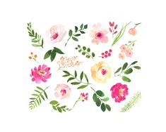 NEW DOWNLOAD LINKS - SEE BELOW by AnnelyBlooms on @creativemarket