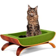 Modern Pet Bed In Green.