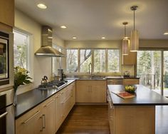 Mid Century Modern Garden Design Photograph | Kitchen Design