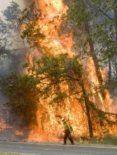 Fires torch East Texas Gladewater wildfire claims life of woman, child; destroys multiple homes...ASKING FOR PRAYER!