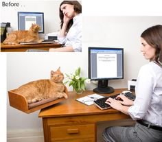 love this...but something tells me my cat would still sit in front of my monitor...
