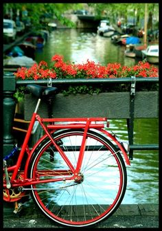Flowers, water, boats, and a bicycle.  What more could you want?