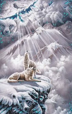 The beauty of the Wolf. Native American Wolf, Native American Artwork, Wolf Photos, Wolf Pictures, Wolf Wallpaper, Nature Wallpaper, Beautiful Wolves, Animals Beautiful, Beautiful Gif