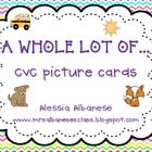 I use CVC (consonant-vowel-consonant) picture cards all the time in my classroom!  These picture cards are a great way to introduce spelling to stu...