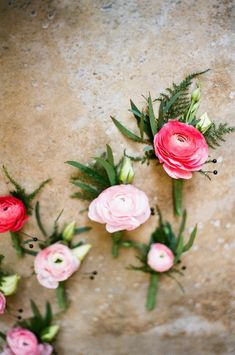 Pink Ranunculus Boutonnieres