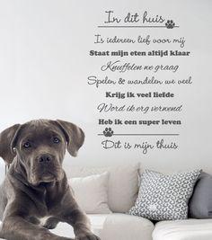 Muursticker In dit huis... Hond of Poes - Verkrijgbaar in verschillende afmetingen en kleuren, vanaf €19,95. Vandaag besteld = binnen 24uur verzonden.