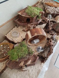 20 Easy & Cheap DIY Chicken Nesting Boxes - Pet cages in our homes, need to be . - 20 Easy & Cheap DIY Chicken Nesting Boxes – Pet cages in our homes, need to be organized and str - Dwarf Hamster Cages, Cool Hamster Cages, Gerbil Cages, Dog Cages, Pet Cage, Robo Dwarf Hamsters, Hamster Habitat, Hamster Care, Hamster Toys