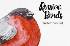 Watercolor Russian Birds by Anna Faun on @creativemarket
