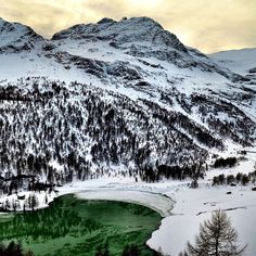 Bernina Express scenic train journey is on the UNESCO World Heritage List Beautiful Places To Visit, Places To See, Bernina Express, Destinations, Voyage Europe, By Train, Train Route, World Heritage Sites, Wonders Of The World
