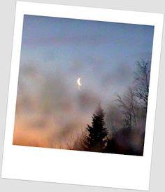 Satu Ylävaaran valokuvia: Kuunsirppi tänä aamuna