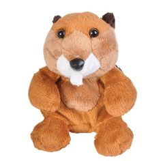 "Beaver 5"" ( Weez Bean Bag Animals) at theBIGzoo.com, a family-owned store. Check our sales & FREE Shipping."