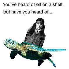 If your a Harry Potter fan you'll find this funny or get this joke Harry Potter Jokes, Harry Potter Fandom, Hogwarts, Slytherin, No Muggles, Nerd, Yer A Wizard Harry, And So It Begins, Harry Potter Universal
