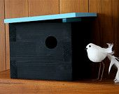 Bird Haus