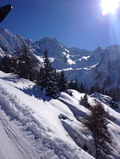 Passo del Tonale - krokus 2015 - skifriends