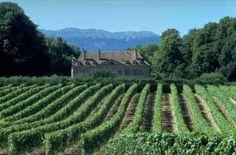 Geneva countryside