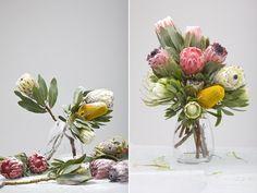 - PROTEAS - we love | MUST LOVE FLOWERS | FLORAL STUDIO JEFFREYS BAY | www.mustloveflowers.co.za