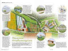 0378 Weleda Magazine – Medicinal Plants Garden