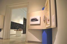 """""""Resumen del Fuego"""" del arquitecto Fernando González Gortázar. La muestra se trata de un gran resumen de la obra y trayectoria de este notable arquitecto y escultor."""