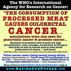 Eating Red Meat & Higher Rates of Cancer, Heart Disease, Diabetes, Death. Vegetarian Memes, Vegan Humor, Vegan Vegetarian, Health Memes, Prostate Cancer, Colon Cancer, Canned Meat, Meat Shop, Healthy Meat Recipes