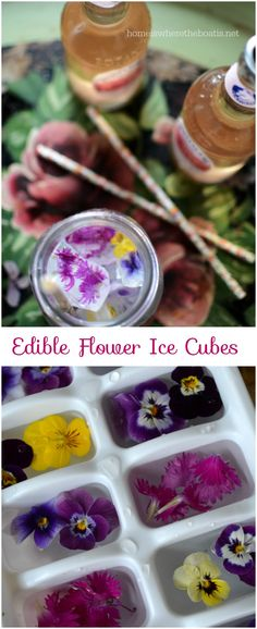 Harvest your violas, pansies or edible flowers to make floral ice cubes for a garden party beverage or a festive way to serve lemonade! #edibleflowers