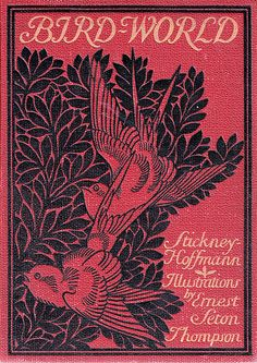 """""""Bird-World,"""" a bird book for children. Illustrated by Ernest Seton Thompson. By J.H. Stickney assisted by Ralph Hoffmann. Copyright 1898 by Ginn & Company. (book cover)"""