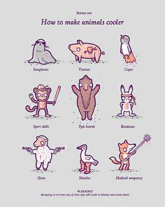 How to make animals cooler