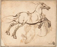 Jacques Callot (French, 1592–1635). Study of a Horse (recto); Study of a Standing Horse (verso). The Metropolitan Museum of Art, New York. Promised Gift of Mr. and Mrs. David M. Tobey, and Purchase, Mr. and Mrs. David M. Tobey Gift, 2000 (2000.253a, b) #horses