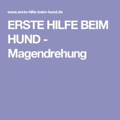 ERSTE HILFE BEIM HUND - Magendrehung
