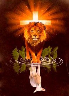 God,Jesus, and Heaven is the Lion and the Lamb :) Lamm Tattoo, Lion Of Judah Jesus, Jesus Lamb, Pictures Of Jesus Christ, Jesus Pics, Lion And Lamb, Lion Wallpaper, Saint Esprit, Lion Pictures