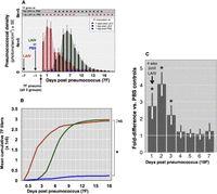 Live Attenuated Influenza Vaccine Enhances Colonization of Streptococcus pneumoniae and Staphylococcus aureus in Mice