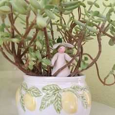 #succulents#sukkulenten#floral#plants#pflanze#ceramics#keramik#übertopf#zitronen#fruit#früchte#elfe#schneeglöckchen#felt#filz#leaves#blätter#structure#homedesign#decoration#deco#interiordesign#schönerwohnen#wohnideen#einrichten#wohnen#dekoideen#zuhause#zimmerpflanze#green