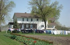Horses and buggies. Laundry lines full of handwashed (and handmade) clothing drying in the sun - Take a step back in time with a visit to one of Iowa's Amish or Mennonite communities.