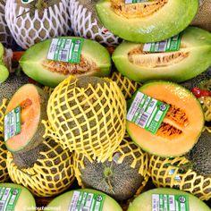 Melon from Aboutsamui.ru
