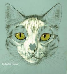cat skull drawing - Google Search