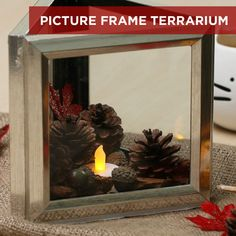 Picture Frame Terrarium diy garden decor dollar stores Turn Dollar Store Frames Into Affordably Chic Terrariums Cute Crafts, Crafts To Do, Quick Crafts, Bead Crafts, Fall Crafts, Paper Crafts, Diy Projects To Try, Craft Projects, Craft Ideas
