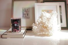 5 Ways To Incorporate Scent Decor Into Your Home   A Giveaway!