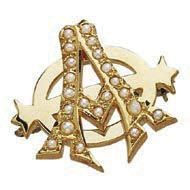 2. Accessory for the bride   My something borrowed and something old will be one of the first Alpha Phi Fraternity pins worn on my gown. A close family friend's grandmother was one of the original founders. Proud to be an Alpha Phi!  #wedding #bestcollegechoiceievermade