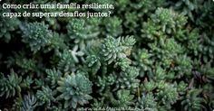 """""""Amor""""... dizia meu marido no telefone. """"O médico me diz que eu estou tendo um infarto """". Nas crises e tempestades, como ser resiliente em família? Veja aqui as 8 hábitos e atitudes de uma família resiliente."""