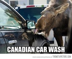 Cars are washed differently in Canada…