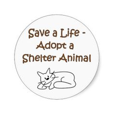 Save A Life - Adopt A Shelter Animal