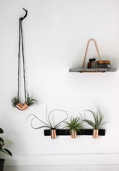 DIY Minimal Copper Airplant Holder @themerrythought for @poppytalk