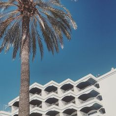 Ein Bunker gleich wie der andere - #palme #palmtree #meerblick #maspalomas #laspalmas #grancanaria #españa #balkon
