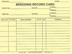 860 Breeding Record Cards 25 Roosters For Sale, African Lovebirds, Game Fowl, Notes Template, Chicken Breeds, Recorded Books, Mother And Father, Cards, Homestead